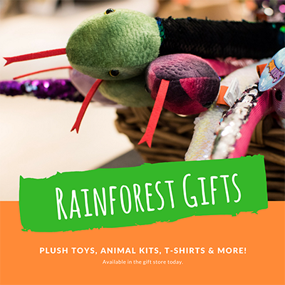XRainforest Gifts