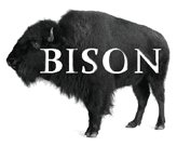 Bison Exhibit