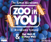 Zoo in You