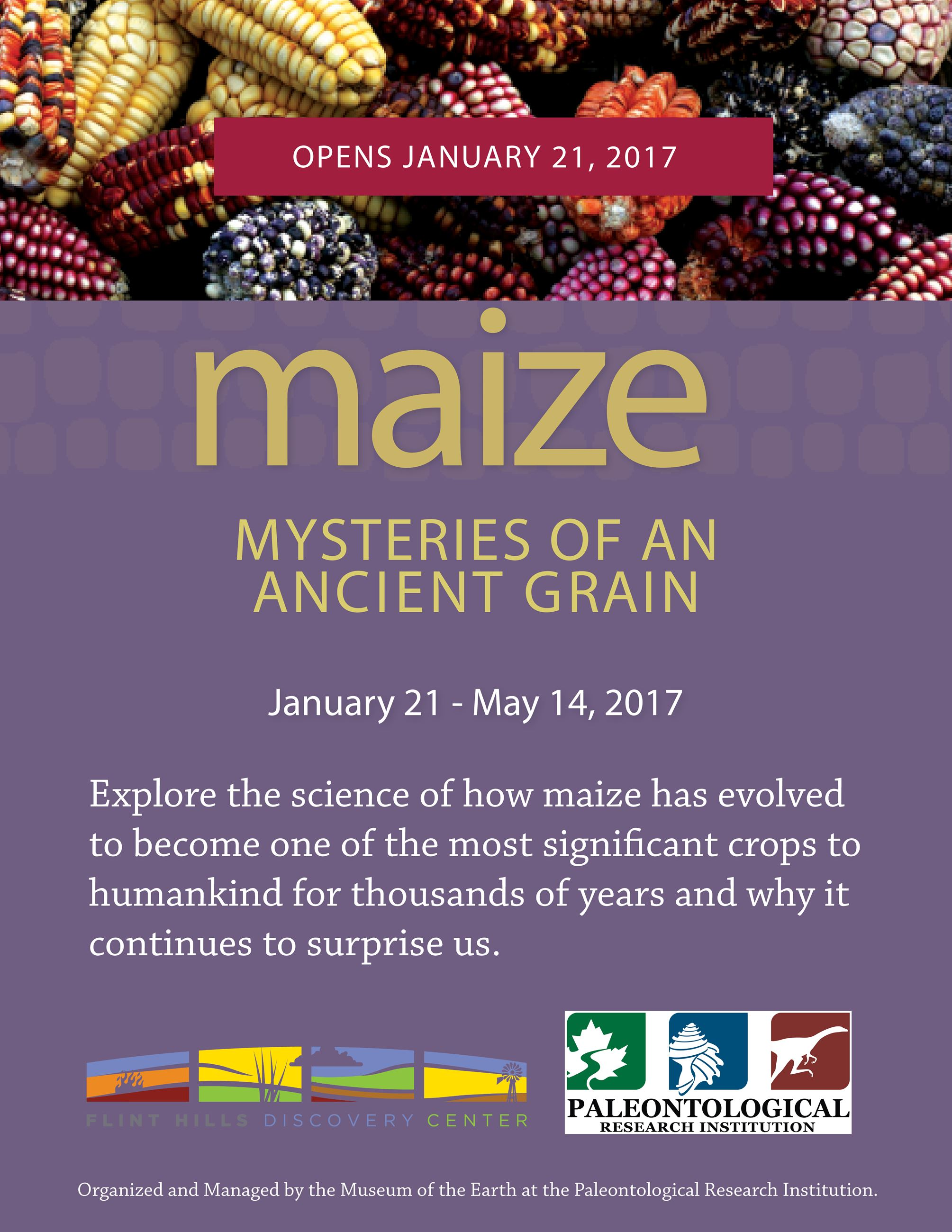 Maize Sign for Website