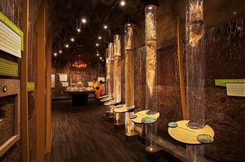 A long room full of native grass exhibits
